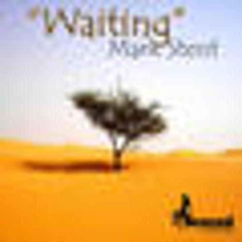 Mark Stent - Waiting (Guy Herman's Flava Mix) [Flexual