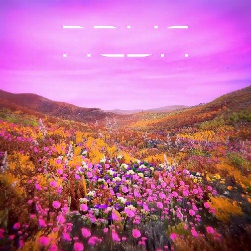 RL Grime - NOVA Pure (Instrumental) 2019 [LP]