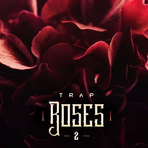 Trap Roses 2 [Diginoiz]