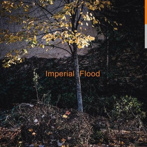 Logos - Imperial Flood 2019 (LP)