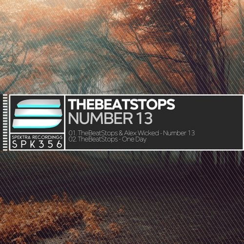 TheBeatStops - Number 13 [EP] 2018