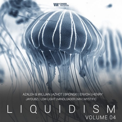 VA - LIQUIDISM VOL.4 (LP) 2018