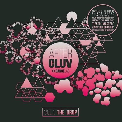 download avicii hey brother remix