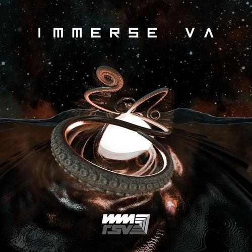 Download VA - Immerse VA (IMMRSVE001) mp3