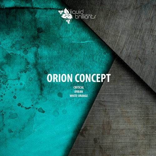 Orion Concept - Critical