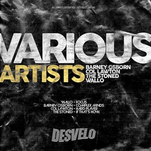 VA - Various Artists 001 [Desvelo Music]