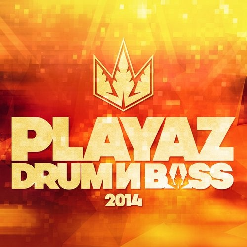 VA - PLAYAZ DRUM & BASS 2014 [LP]