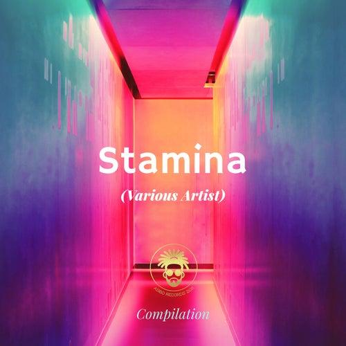 Download The Dream Team, Bladerunner - Stamina (AAR061) mp3