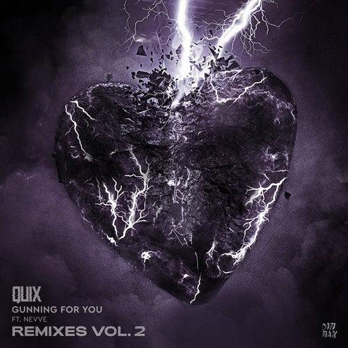 Download QUIX, Nevve - Gunning For You (Remixes, Vol. 2) (DM1282) mp3