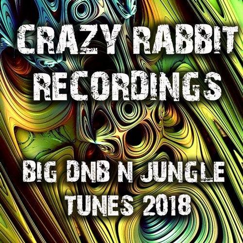 VA — Crazy Rabbit Recordings Big DnB and Jungle Tunes [LP] 2018