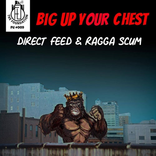 Download Direct Feed, Ragga Scum - Big Up Your Chest (FU009) mp3