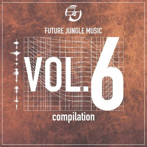 Download VA - Future Jungle Music Compilation, Vol. 6 (FJMCOMP6) mp3