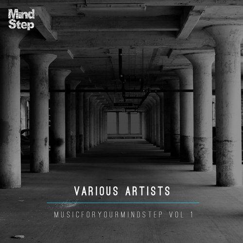 VA - MusicForYourMindStep Vol 1 2014 (LP)
