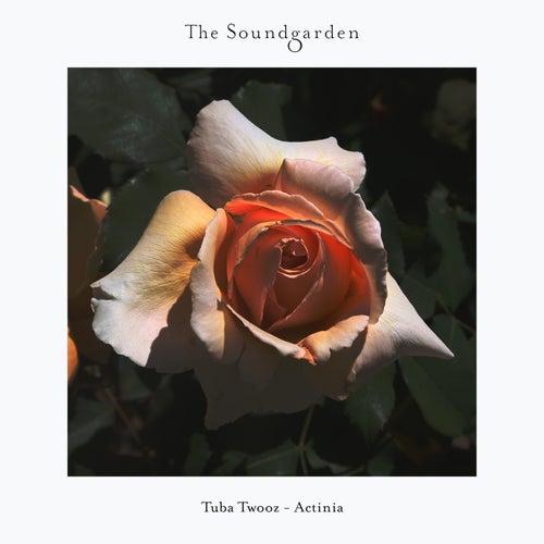 Tuba Twooz - Early Morning Breath (Original Mix) [2021]