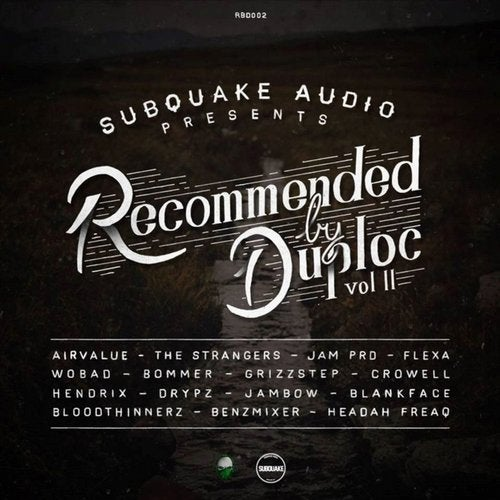 RECOMMENDED BY DUPLOC VOL. 2 (LP) 2014