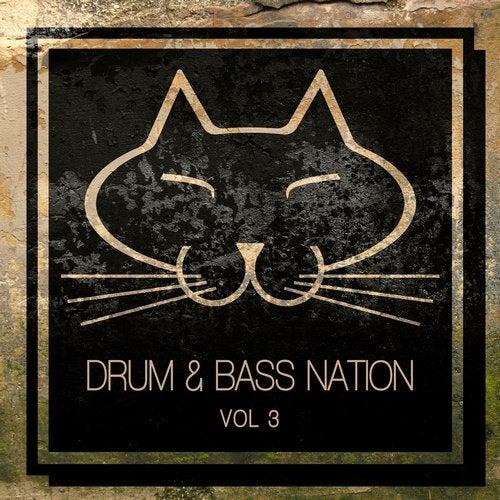 VA - DRUM & BASS NATION VOLUME 3 2019 (LP)