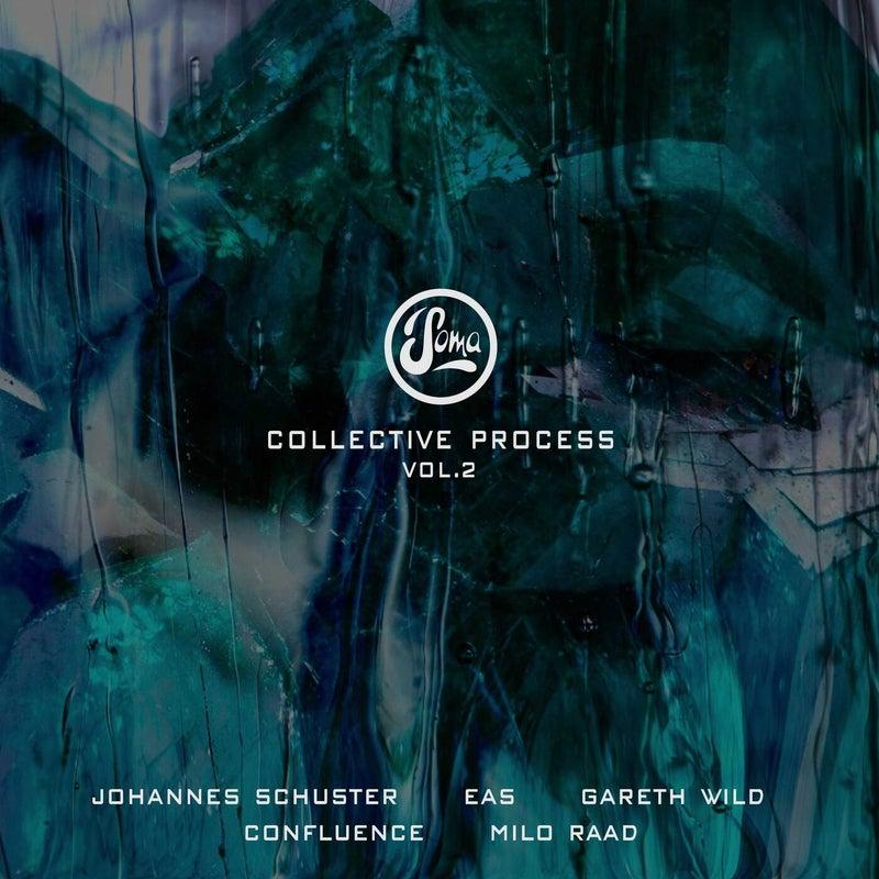 Collective Process Vol. 2