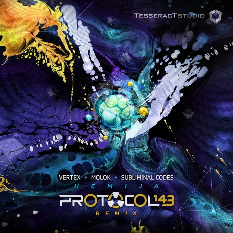 Hemija (Protocol 143 Remix)