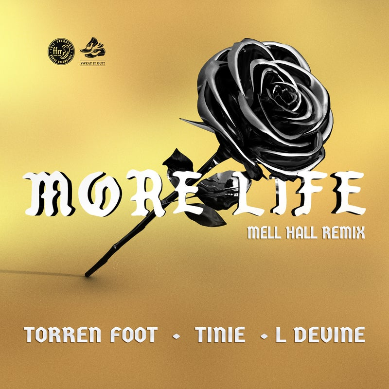 More Life (Mell Hall Remix)