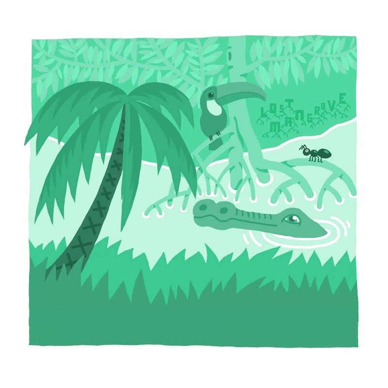 Lost Mangrove