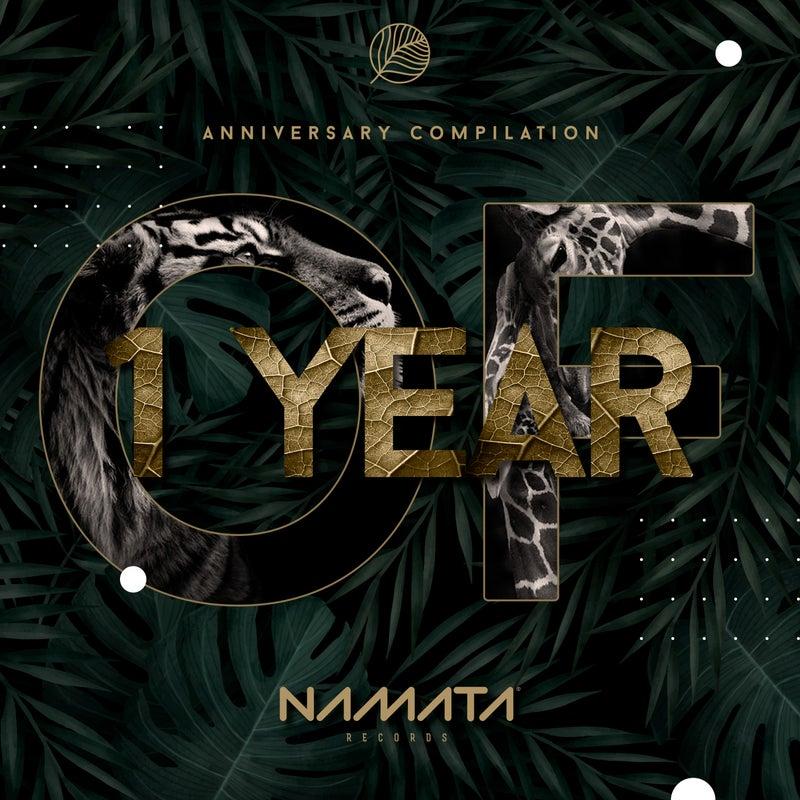 1 Year of Namata