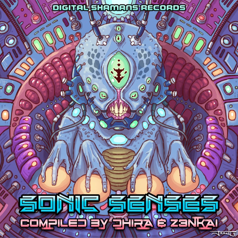 Sonic Senses - Compiled by Dhira & Z3nkai