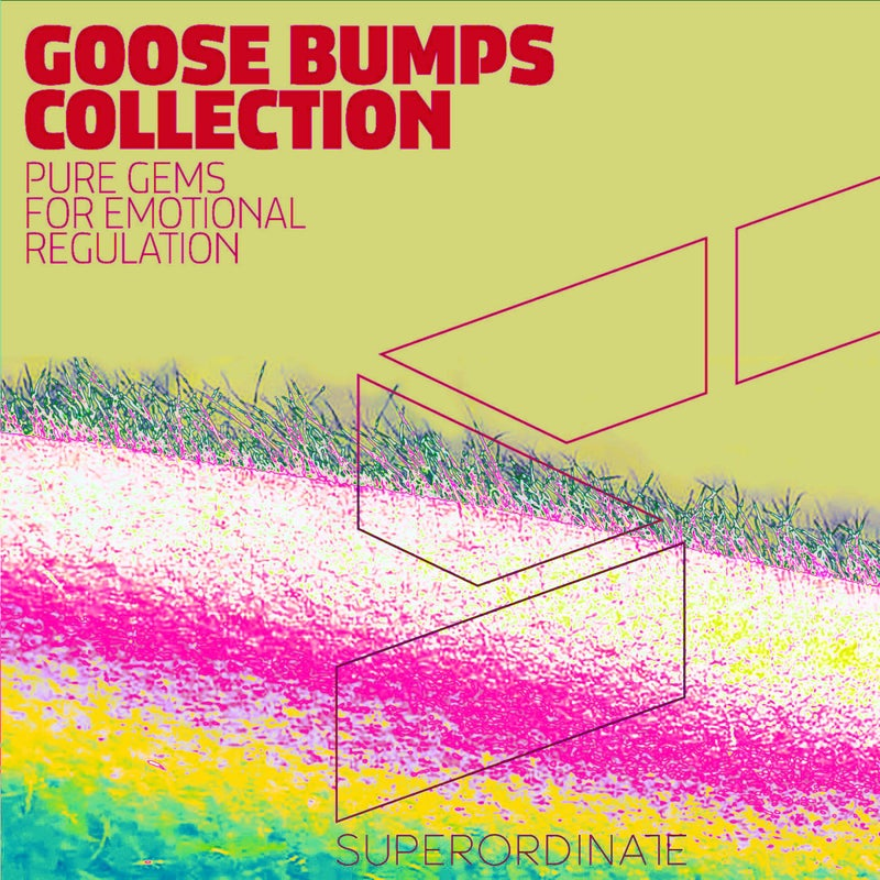 Goose Bumps Collection, Vol. 5