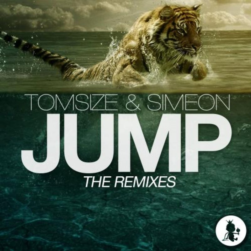 Jump (The Remixes)