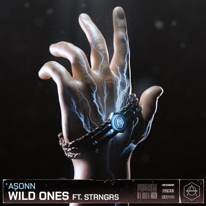 Wild Ones - Extended Mix