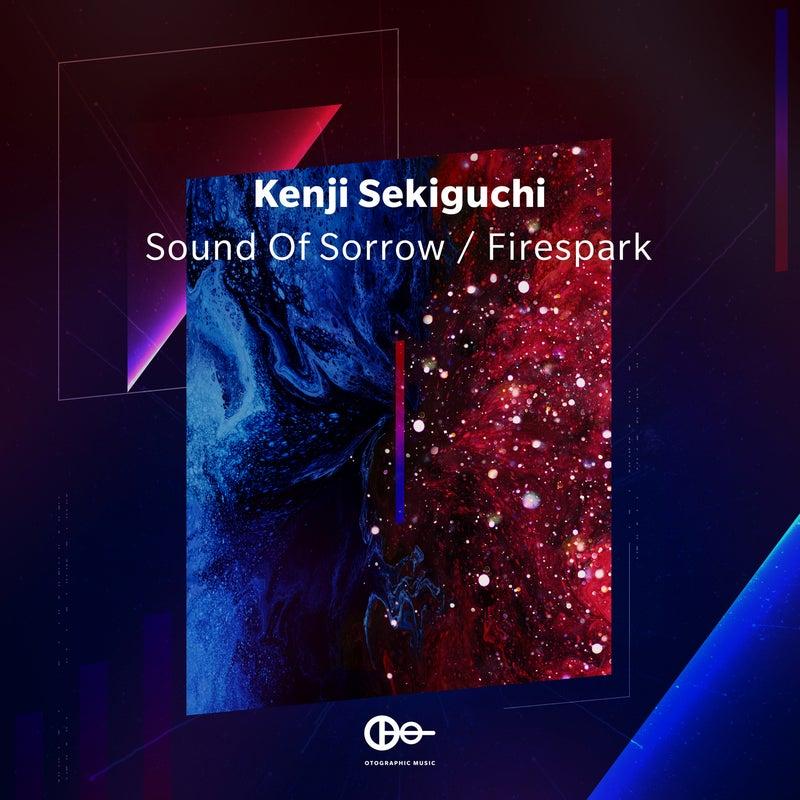 Sound Of Sorrow / Firespark