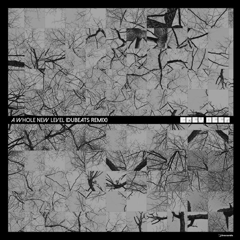 A Whole New Level (Remix)