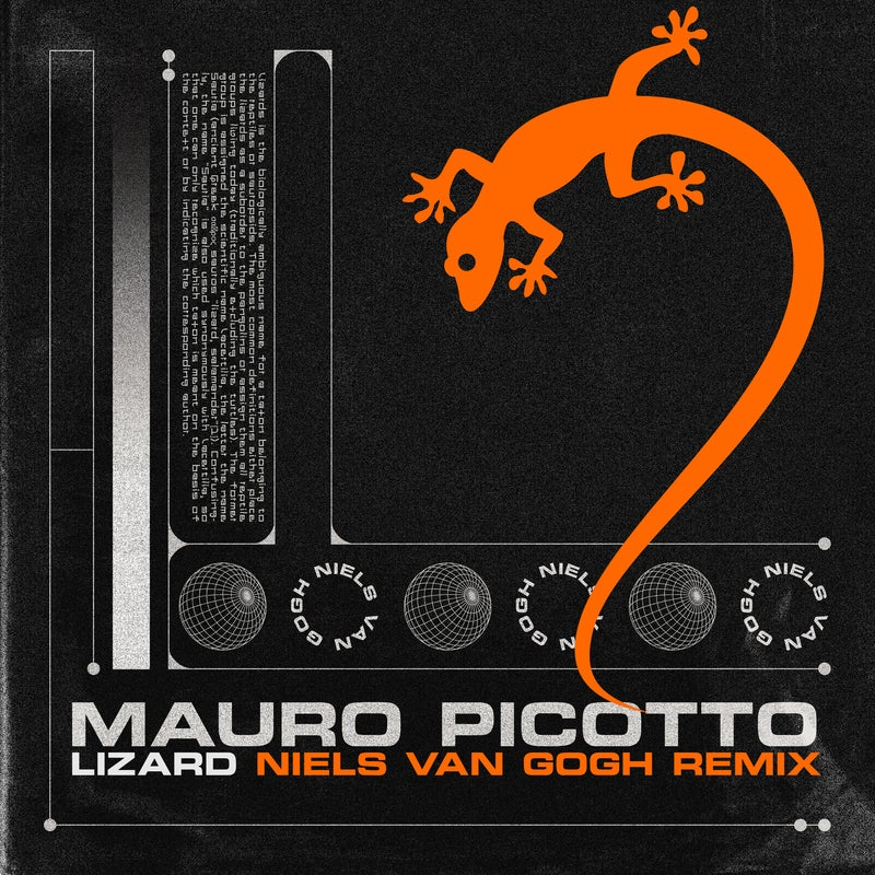 Lizard (Niels Van Gogh Extended Remix)