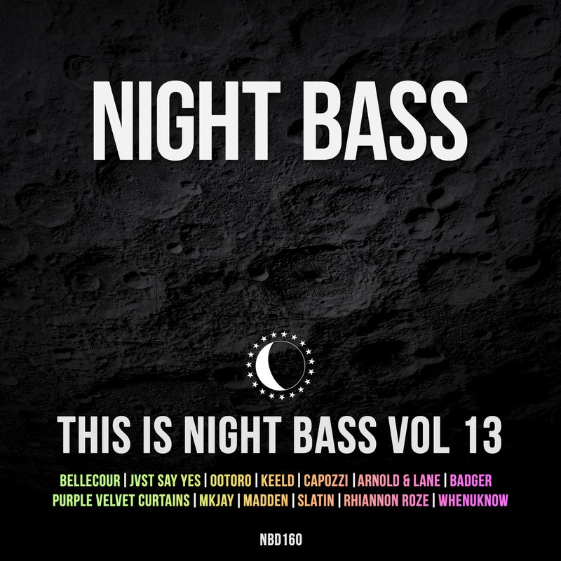 This is Night Bass: Vol. 13