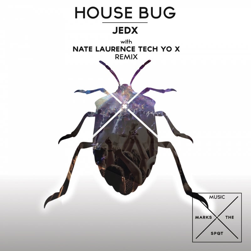 House Bug