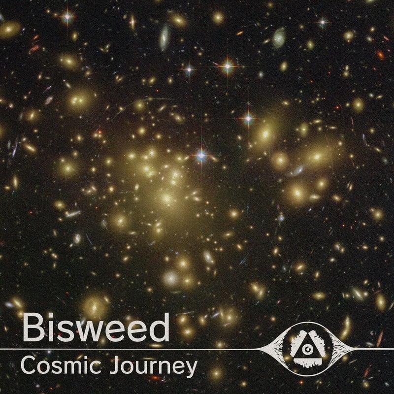 Cosmic Journey