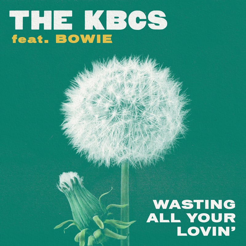Wasting All Your Lovin'