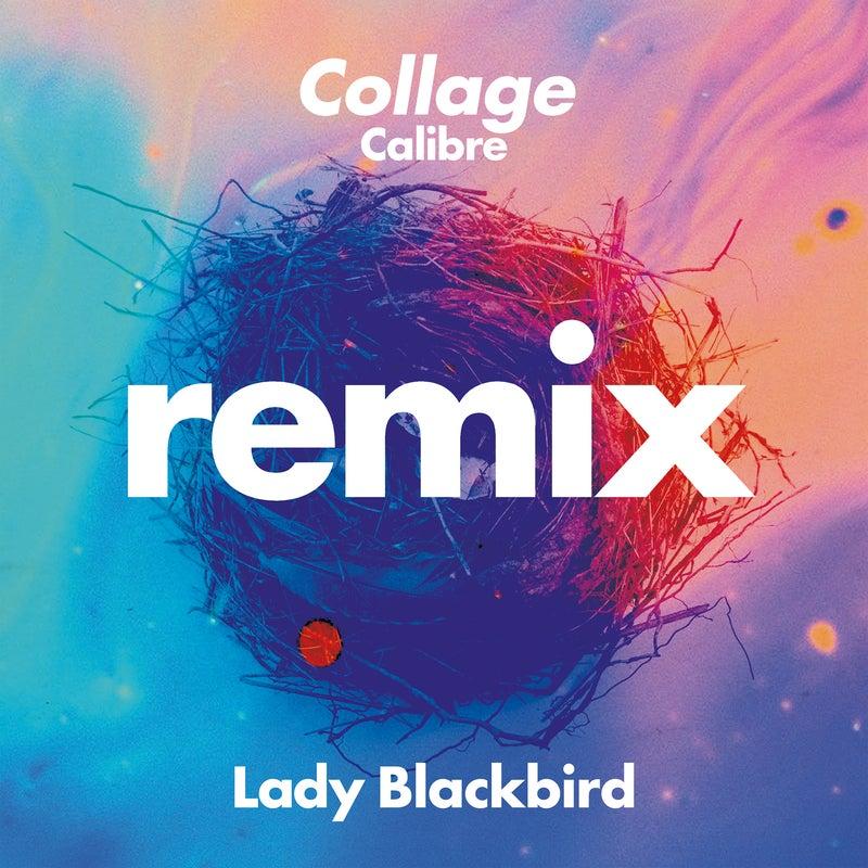 Collage (Calibre Remix)
