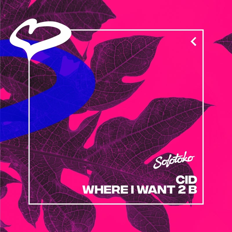 Where I Want 2 B (Extended Mix)