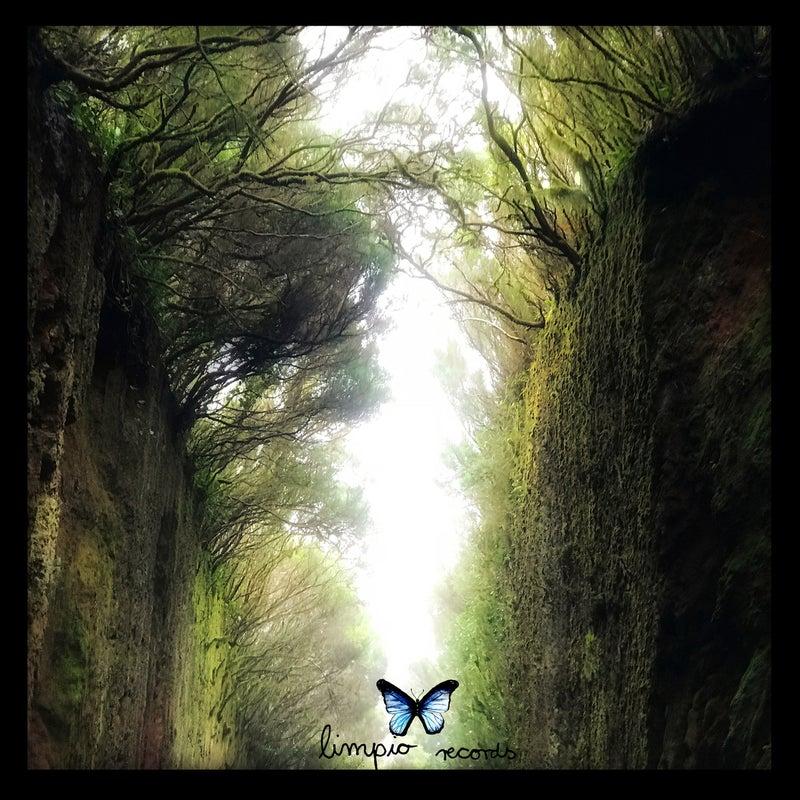 Ventana De Sueños (Traum Remix)