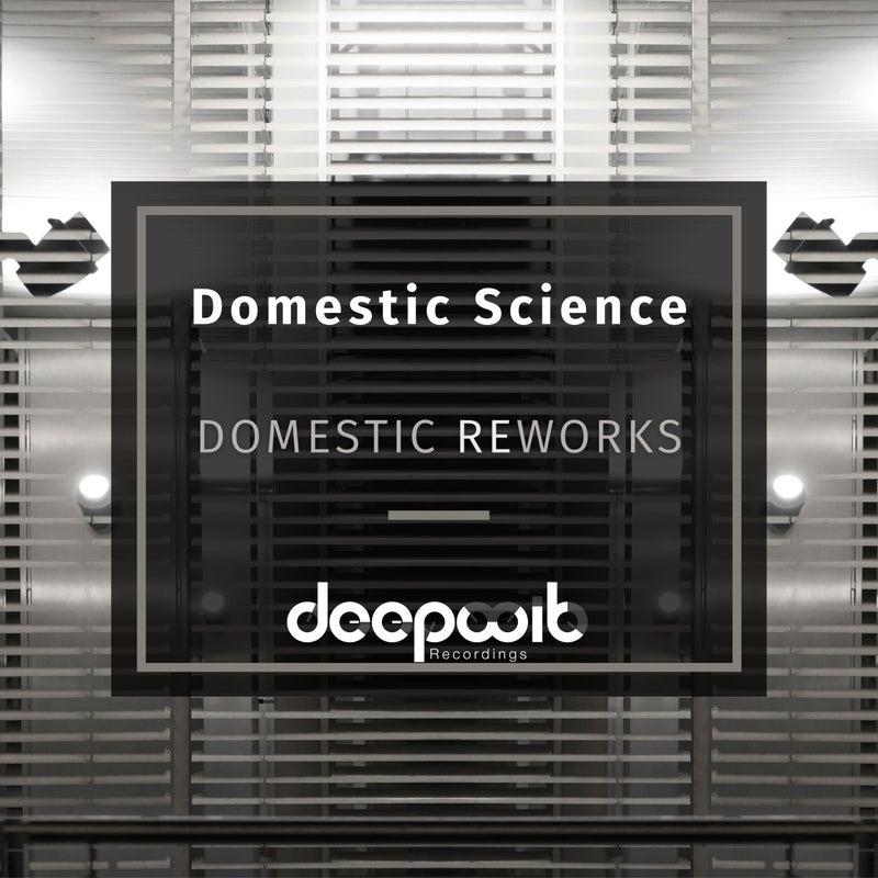 Domestic Reworks