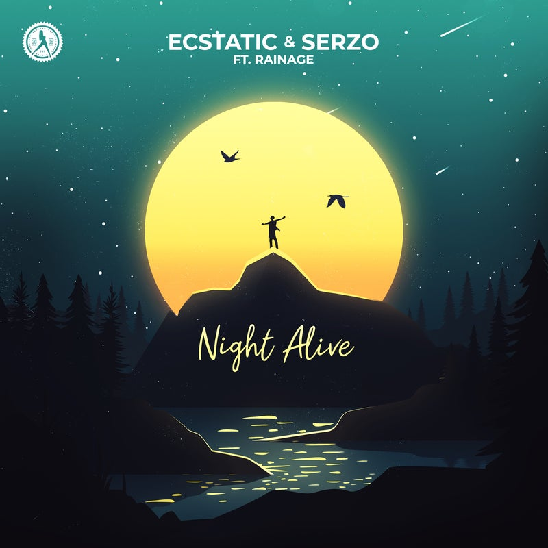 Night Alive