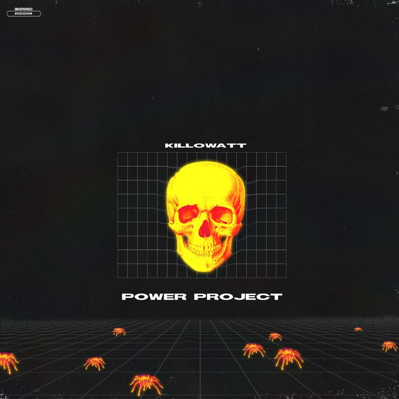 Power Project