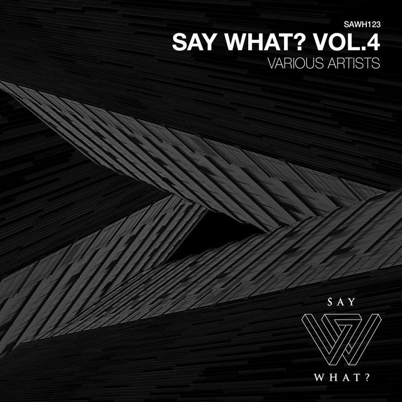 Say What?, Vol. 4