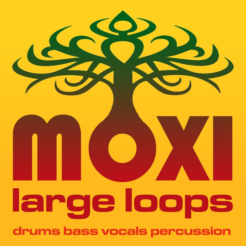 Moxi Large Loops Volume 10