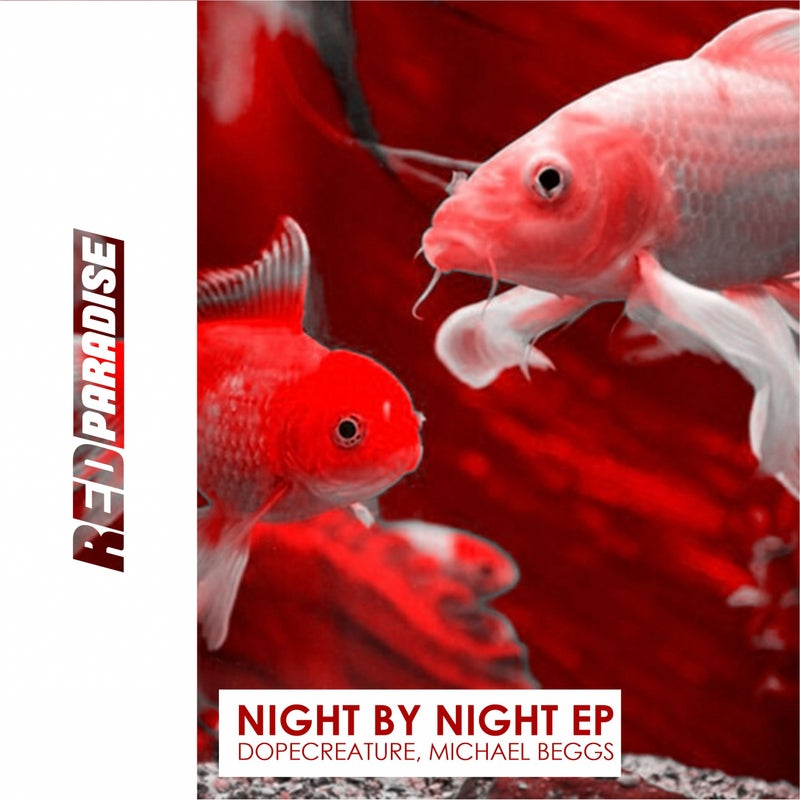Night by Night
