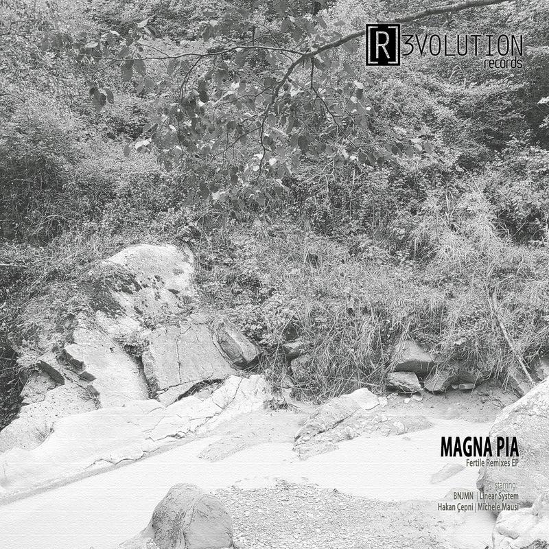 Fertile Remixes EP