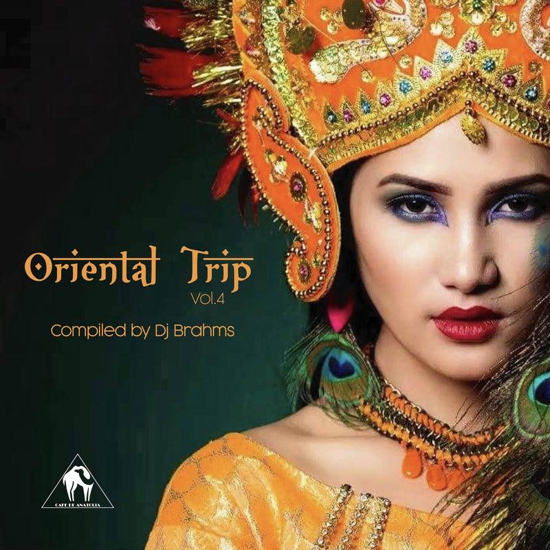 Oriental Trip, Vol. 4 (Compiled by Dj Brahms)