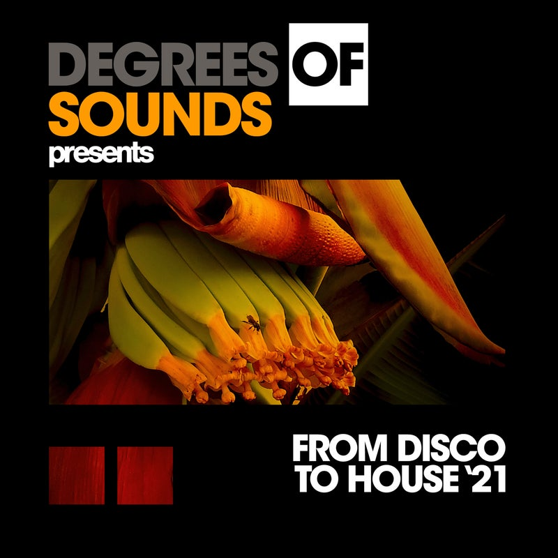 From Disco To House '21