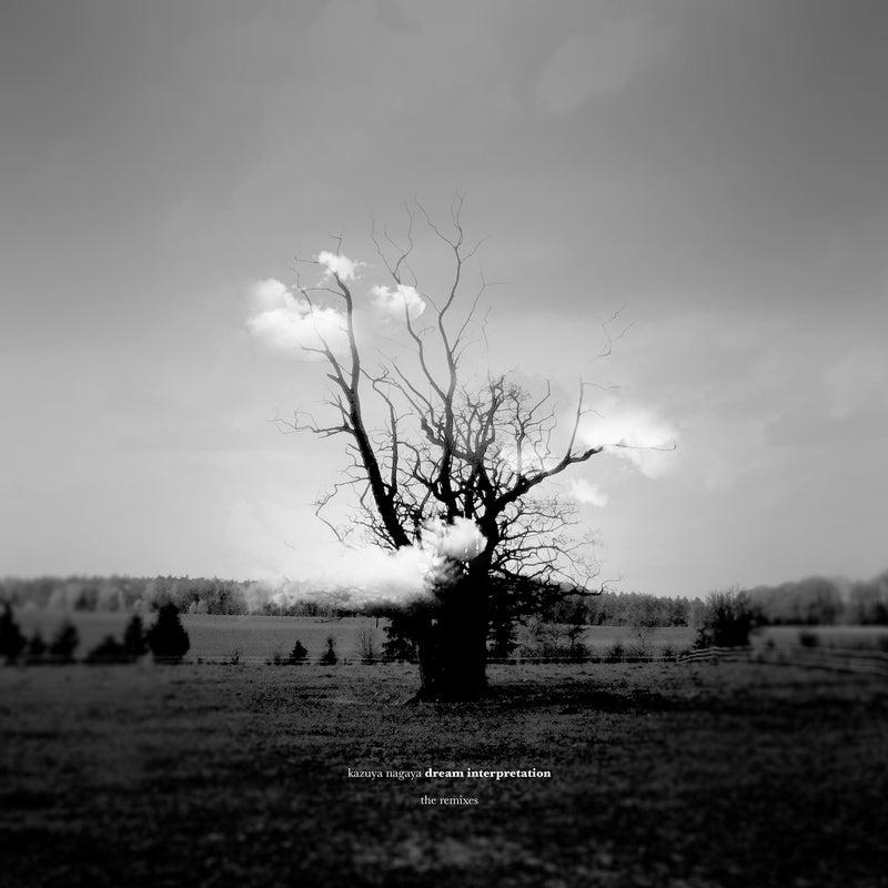 Dream Interpretation (The Remixes)