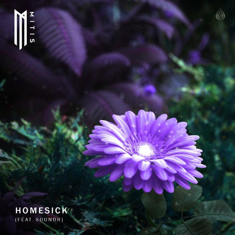 Homesick (feat. SOUNDR)